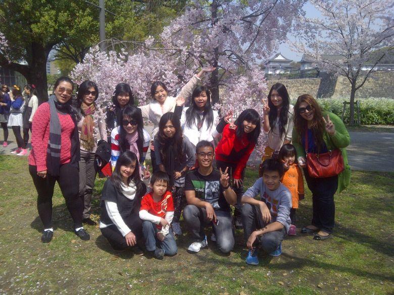 Menikmati Sakura bersama Tour ke Jepang