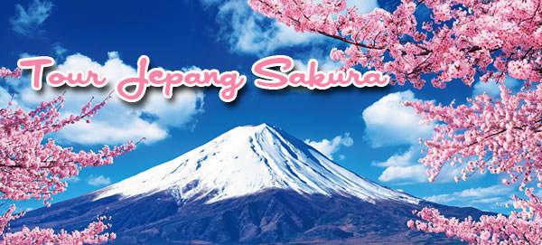 tour ke jepang sakura 2016