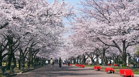 photo by :  www.globesecret.com