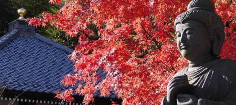 photo by : img.travel.rakuten.co.jp